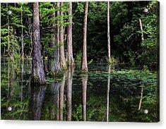 South Alabama Serenity Acrylic Print by JC Findley