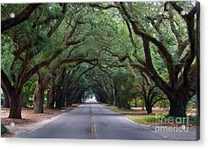 South Boundry Acrylic Print by Skip Willits