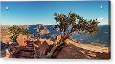South Kaibab Grand Canyon Acrylic Print