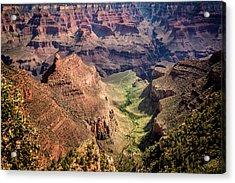 South Rim Grand Canyon Acrylic Print