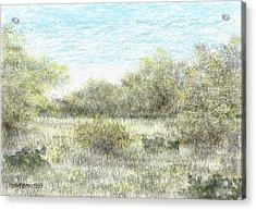 South Texas Brush Country II Acrylic Print