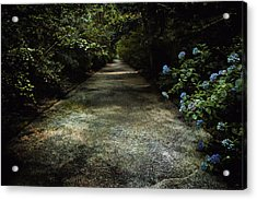 Acrylic Print featuring the photograph Southern Blue by Jessica Brawley