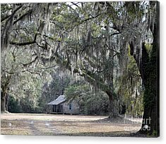Southern Shade Acrylic Print by Al Powell Photography USA