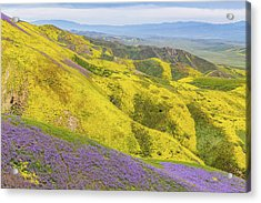 Acrylic Print featuring the photograph Southern View by Marc Crumpler