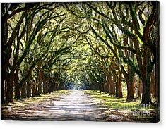 Southern Way Acrylic Print by Carol Groenen