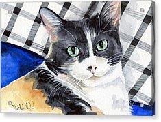 Southpaw - Calico Cat Portrait Acrylic Print