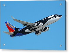 Southwest Boeing 737 Shamu At Sky Harbor April 13 2006 Acrylic Print by Brian Lockett