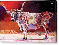 Southwest Longhorn Acrylic Print by Bob Coonts