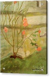 Southwick Hall Rose Acrylic Print by Paula Maybery
