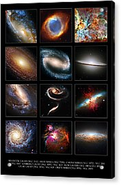 Space Beauties Acrylic Print by Ricky Barnard