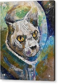 Space Cat Acrylic Print by Michael Creese