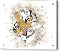 Space Lion Cub White Acrylic Print