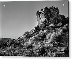 Space Rock Acrylic Print by Blake Yeager