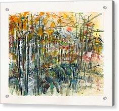 Spanish Peaks Study 2 Acrylic Print