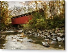 Acrylic Print featuring the photograph Spanning Across The Stream by Dale Kincaid