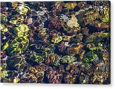 Sparkling Flowing Light Acrylic Print by Leland D Howard