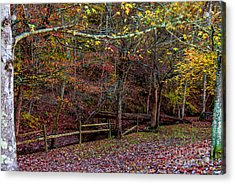 Sparkling With Colors - Natchez Trace Acrylic Print