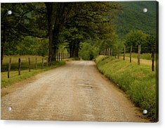 Sparks Lane - Cades Cove Acrylic Print by Andrew Soundarajan
