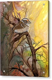 Acrylic Print featuring the painting Sparrow by Sherry Shipley