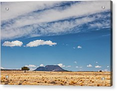 Acrylic Print featuring the photograph Sparse by Rick Furmanek