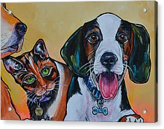 Acrylic Print featuring the painting Spay And Neuter by Patti Schermerhorn