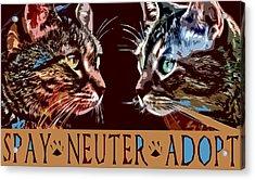 Spay Neuter Adopt Acrylic Print