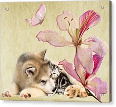 Special Friends Acrylic Print