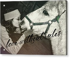 Special Pony Quote Acrylic Print by JAMART Photography