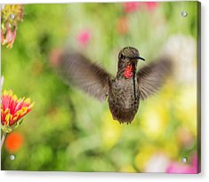 Speckles Acrylic Print by Mike Herdering