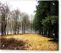 Spessart Landscape  Acrylic Print by Adelso Bausdorf