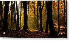 Speulder Panorama Acrylic Print