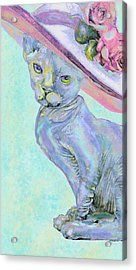 Sphinx In Pink Hat Acrylic Print by Jane Schnetlage
