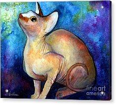 Sphynx Cat 5 Painting Acrylic Print