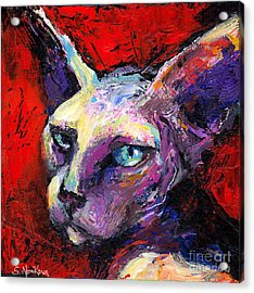 Sphynx Sphinx Cat Painting  Acrylic Print by Svetlana Novikova