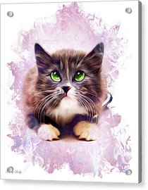 Spice Kitty Acrylic Print by Kathy Kelly