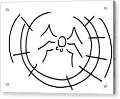 Spider Acrylic Print