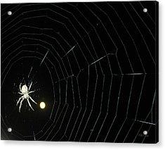 Spider Moon Acrylic Print