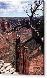 Spider Rock Acrylic Print by Thomas R Fletcher