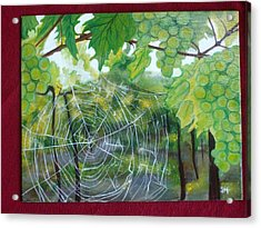 Spider Web In Spring Acrylic Print by Jessica Meredith