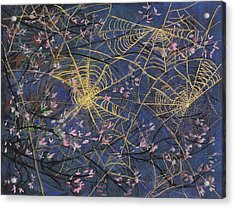 Spider Webs And Bloosoms Acrylic Print by Ethel Vrana