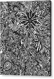 Spider's Web Acrylic Print by Mandy Shupp