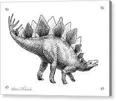 Stegosaurus - Dinosaur Decor - Black And White Dino Drawing Acrylic Print