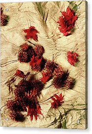 Spiked Nuts Red Acrylic Print