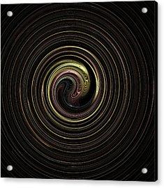 Spin Cycle 02 Acrylic Print