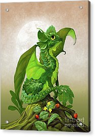 Spinach Dragon Acrylic Print by Stanley Morrison