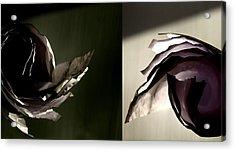 Spinning Ideas Acrylic Print by Mark  Ross