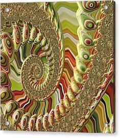 Spiral Fractal Acrylic Print by Bonnie Bruno