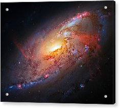 Spiral Galaxy M106 Acrylic Print by Marco Oliveira