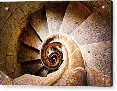 Spiral Steps Acrylic Print