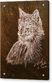 Spirit Fox  Acrylic Print by Rick Silas